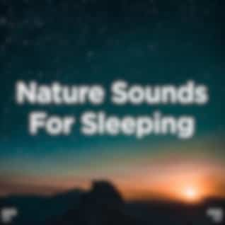 """!!"""" Nature Sounds For Sleeping """"!!"""