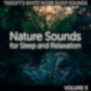 Nature Sounds for Sleep and Relaxation Volume 3