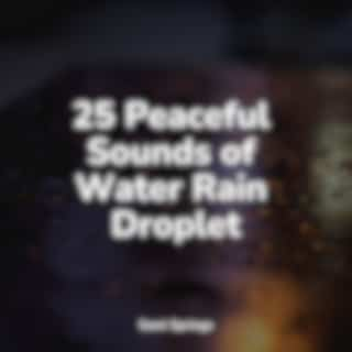 25 Peaceful Sounds of Water Rain Droplet