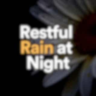 Restful Rain at Night