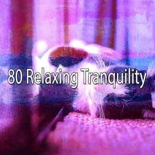 80 Relaxing Tranquility