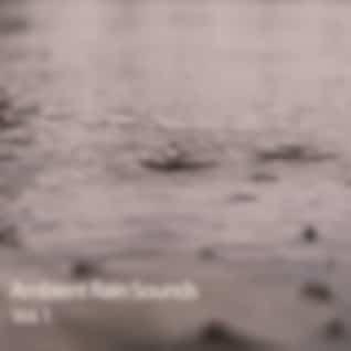 Ambient Rain Sounds Vol. 1