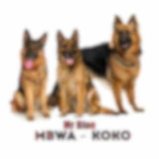 Mbwa Koko