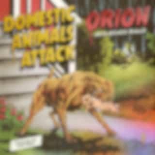 Domestic Animals Attack