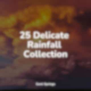 25 Delicate Rainfall Collection