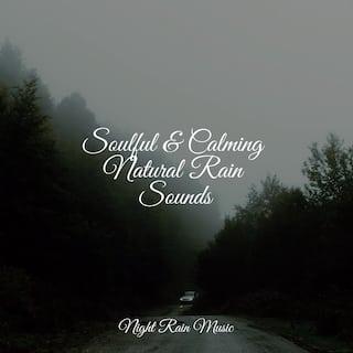 Soulful & Calming Natural Rain Sounds