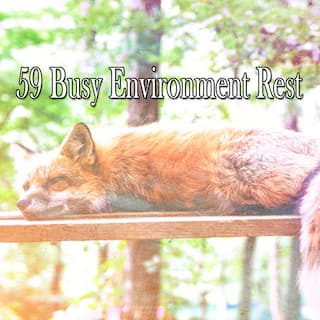 59 Busy Environment Rest