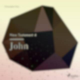 The New Testament 4 - John