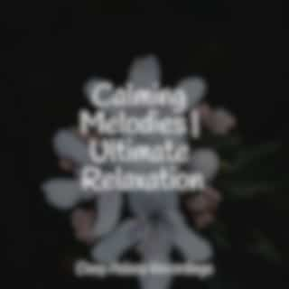 Calming Melodies | Ultimate Relaxation