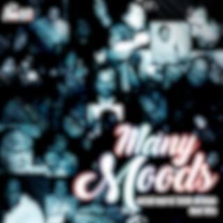 Many Moods (Best Hits)