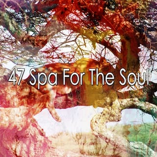 47 Spa for the Soul