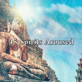 45 Spirits Aroused