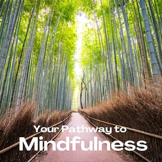 Your Pathway to Mindfulness