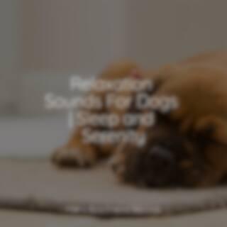 Deep Sleep Sessions For Dogs | Ultimate Sounds | Sleep