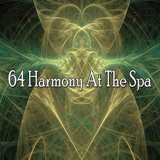 64 Harmony at the Spa