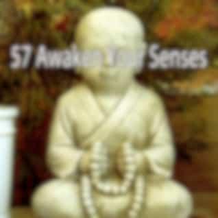 57 Awaken Your Senses