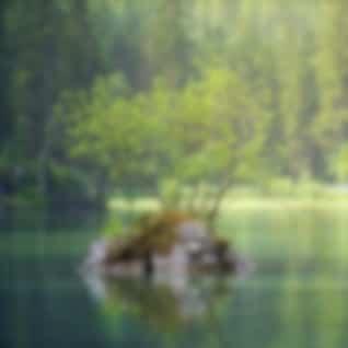 Deep Sleep Sounds | Complete Relaxation
