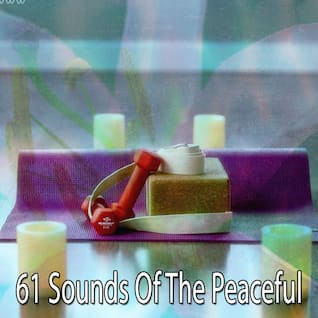 61 Sounds Of The Peaceful
