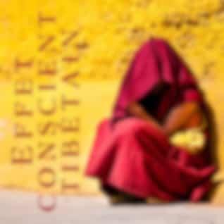 Effet conscient tibétain (Expérience de clarté: Zen bouddhiste, Harmonie mentale, Sensation pure, L'art du bol tibétain)