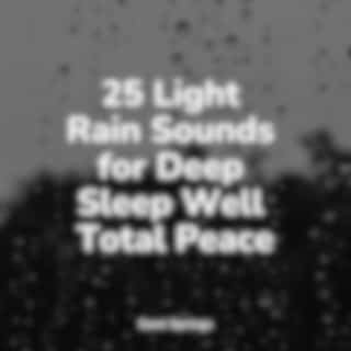25 Light Rain Sounds for Deep Sleep Well Total Peace