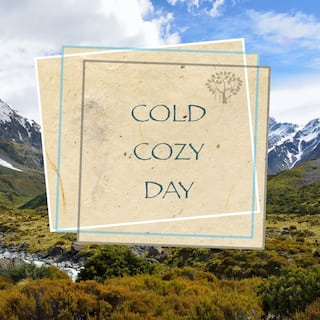Cold Cozy Day