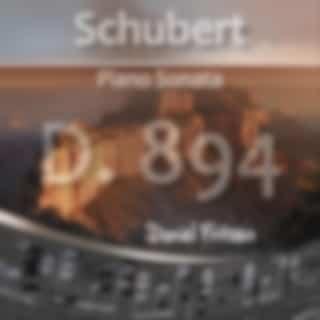Schubert: Piano Sonata in G Major, D. 894