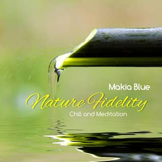 Nature Fidelity (Chill and Meditation)