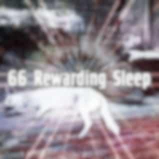 66 Rewarding Sleep