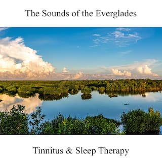 The Sounds of the Everglades: Tinnitus & Sleep Therapy