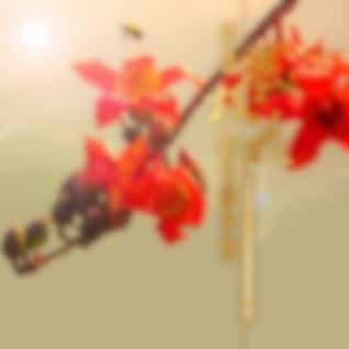 英雄攀枝花-阳光康养地 (攀枝花十大优秀原创歌曲专辑)