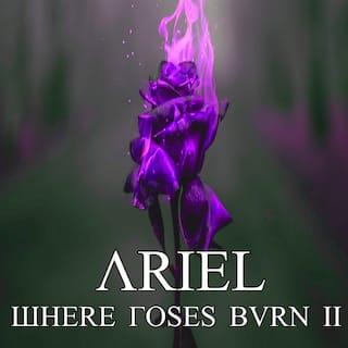 Where the Roses Burn II