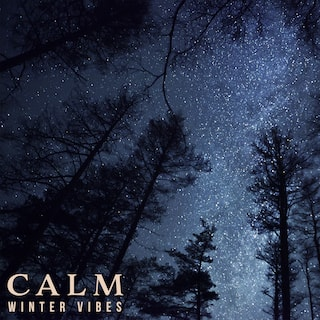 Calm Winter Vibes - Calm Ambient Music, Total Chill, Relaxation for the Long Winter Evenings