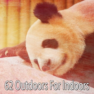 62 Outdoors for Indoors