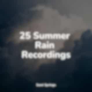 25 Summer Rain Recordings