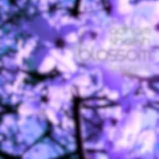 Music for Cherry Blossoms, Vol. 2