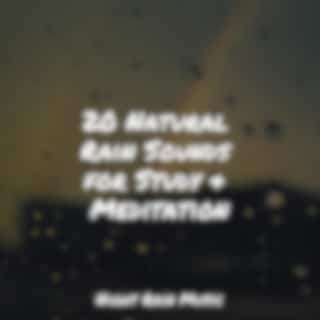 20 Natural Rain Sounds for Study & Meditation