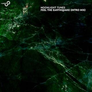 Feel The Earthquake (Intro Mix)