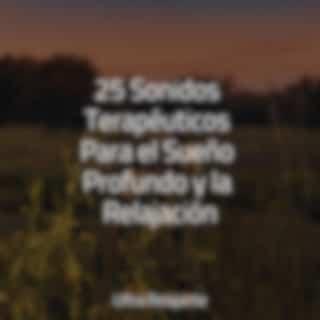 25 Sonidos Terapéuticos Para el Sueño Profundo y la Relajación
