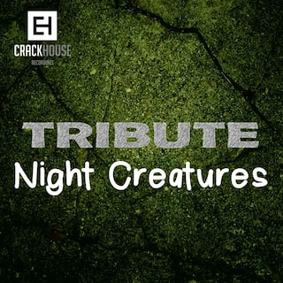 Tribute To Night Creatures