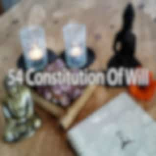 54 Constitution of Will
