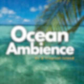 Ocean Ambience on a Tropical Island