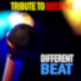 Different Beat Tribute To Boyzone