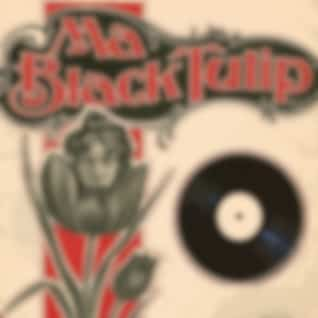 Ma Black Tulip