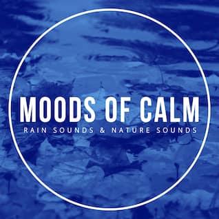Moods of Calm