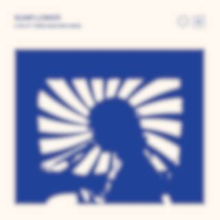 Sunflower: Live at Third Man Records