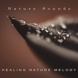 Healing Nature Melody