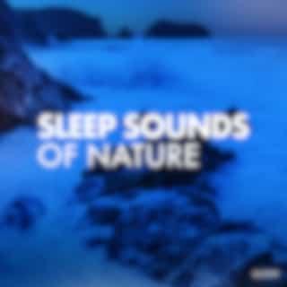 Sleep Sounds of Nature (Original Mix)