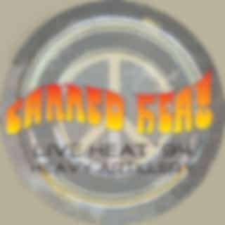 Live Heat '94 - Heavy Artillery