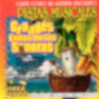 Pistas Musicales Con Sonora Grandes Exitos de las Sonoras