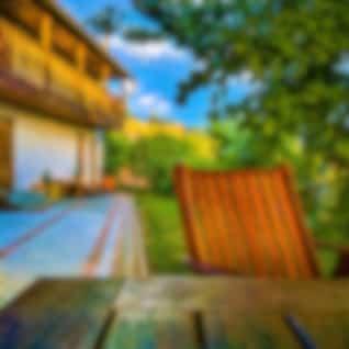 Relax in a Garden: Birds, Neighbour & Small Road
